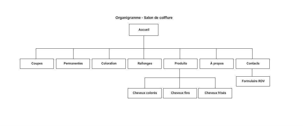 photo comment parler d un organigramme