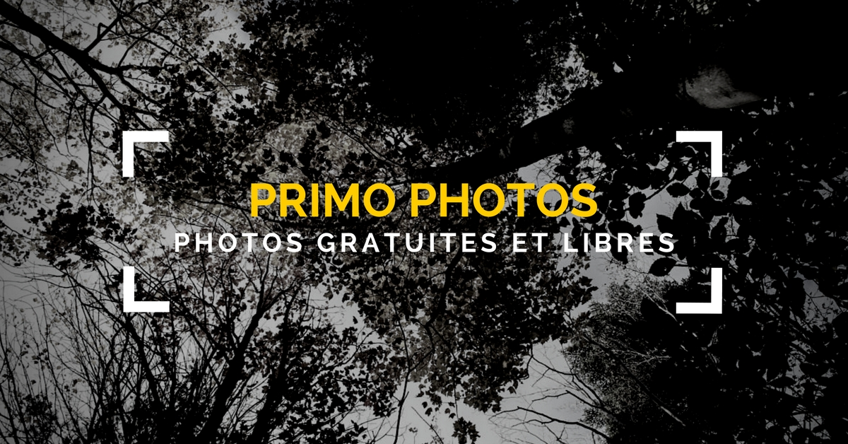 Images gratuites et libres pour un usage personnel et commercial.